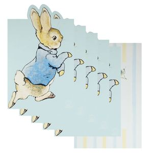 Peter Rabbit Invitations - pack of 10