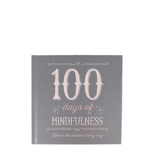 100 days of mindfulness journal