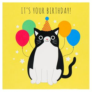 Party cat it's your birthday card