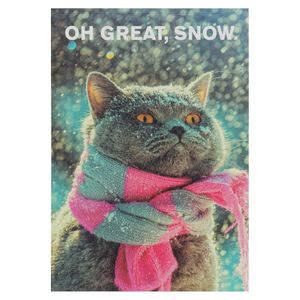 Oh great, snow cat Christmas postcard