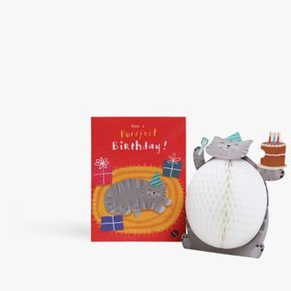 Pop Out Honeycomb Cat Birthday Card  main image