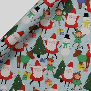 Santa and friends wrapping paper - 5m main image