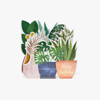 Plants Fold Out Birthday Card  main image