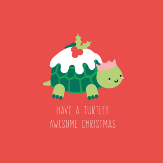 Turtely Awesome Christmas Online Gift Voucher  main image