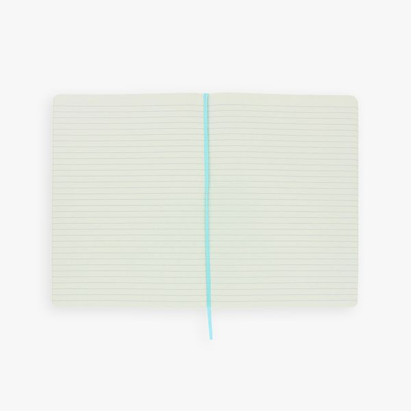 Agenzio Large Lined Notebook - Mint