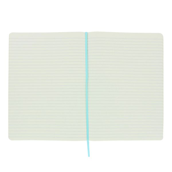 Agenzio large mint lined notebook