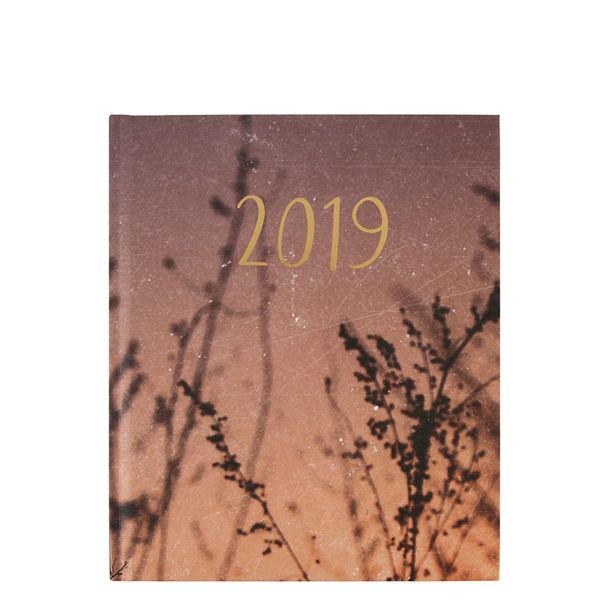 Large year in colour week on 2 pages diary 2019