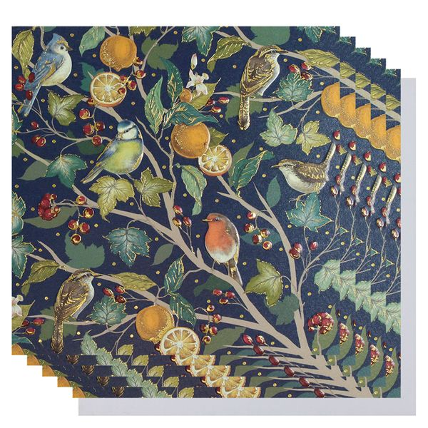 The Art File Birds and oranges luxury Christmas cards - pack of 8