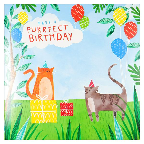 Pop out purrfect cat birthday card