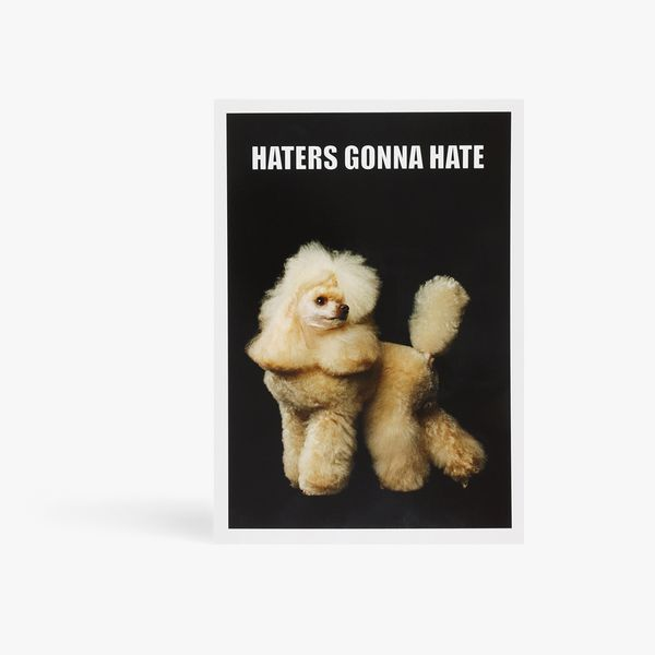 Haters gonna hate poodle postcard