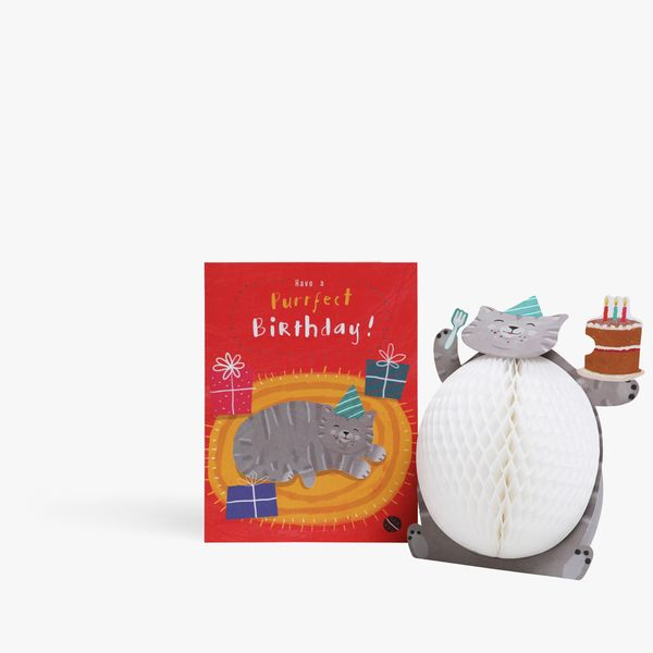 Pop Out Honeycomb Cat Birthday Card