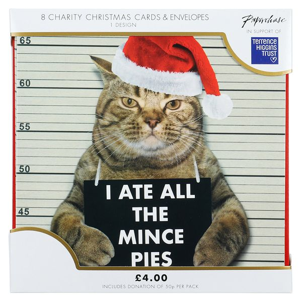 I ate all the mince pies charity Christmas cards – pack of 8