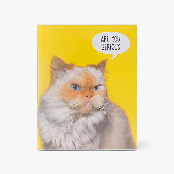 8x10 are you serious notebook