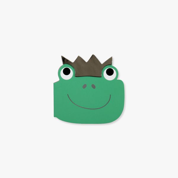A5 Fairy and Frog Notebook