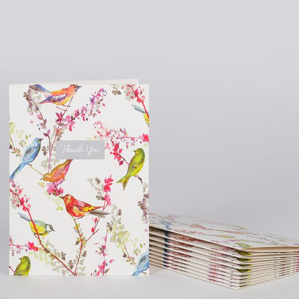 Painterly birds thank you notecards - pack of 10
