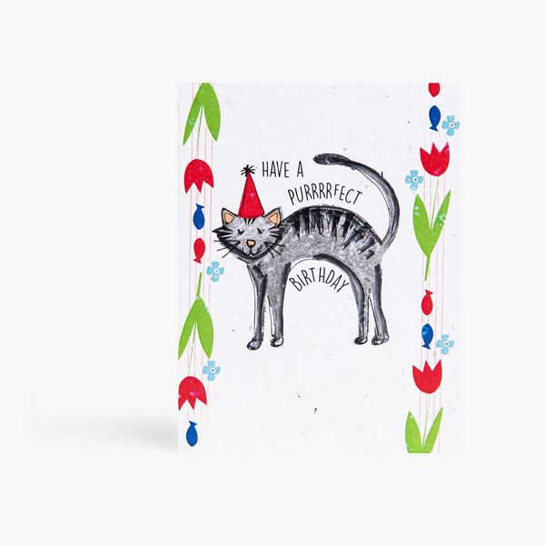 Have A Purrfect Birthday Seed Card
