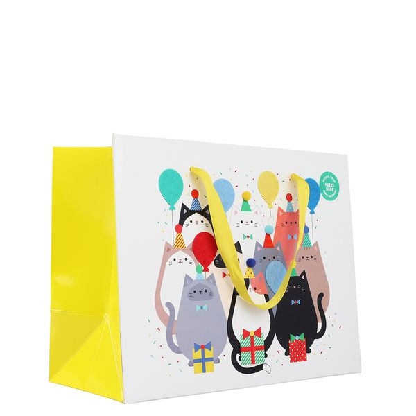Record your own message cats medium gift bag