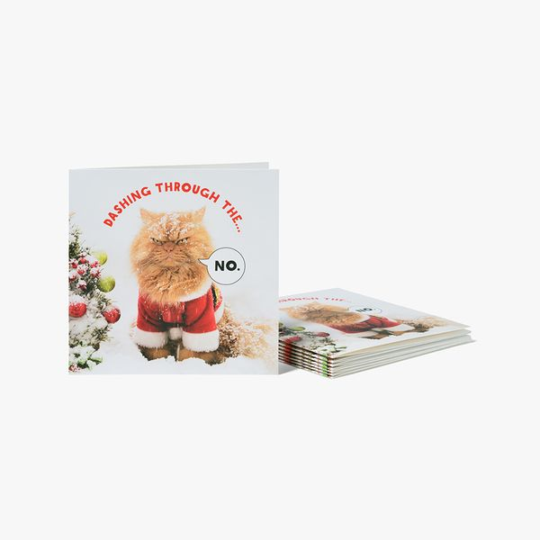 Christmas Cat Charity Cards - Pack of 8