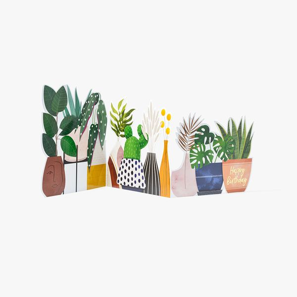 Plants Fold Out Birthday Card