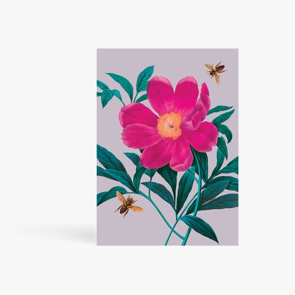 Pink Flower With Bees Card